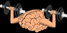 brain-1295128_640
