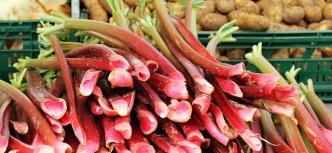 rhubarb-1422546_640