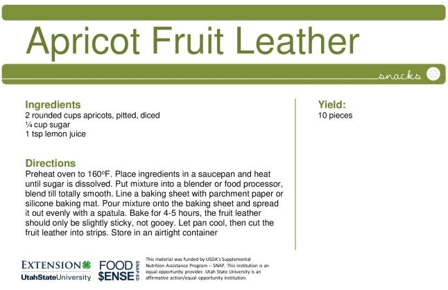 apricot-leather.jpg