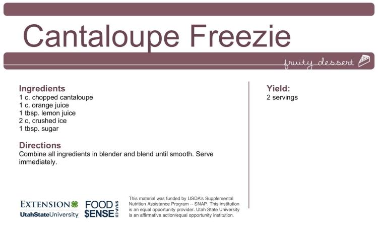 Cantaloupe freezie-1