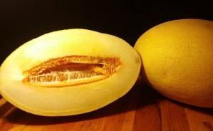 melon-1874852_640.jpg