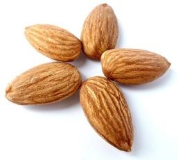 almonds – Kids Create
